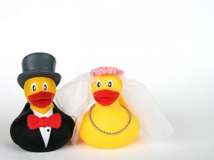 wedding ducks right